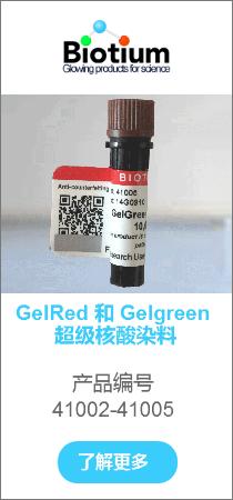 GelRed 和 Gelgreen 超级核酸染料