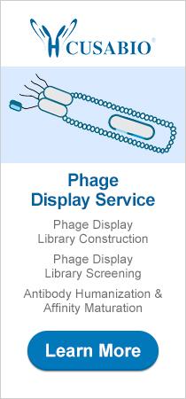 CUSABIO Phage Display Service