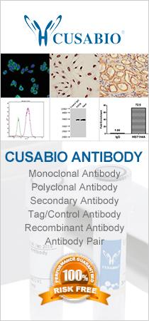 CUSABIO antibodies