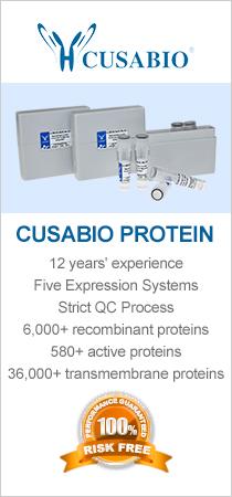 CUSABIO Recombinant Protein