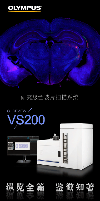 FV3000 Confocal Laser Scanning Microscope